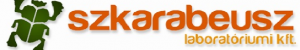 Screenshot_2020-08-29 Szkarabeusz Kft - Hivatalos oldal